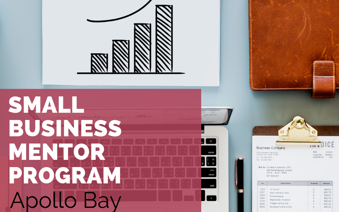Small Business Mentor Program